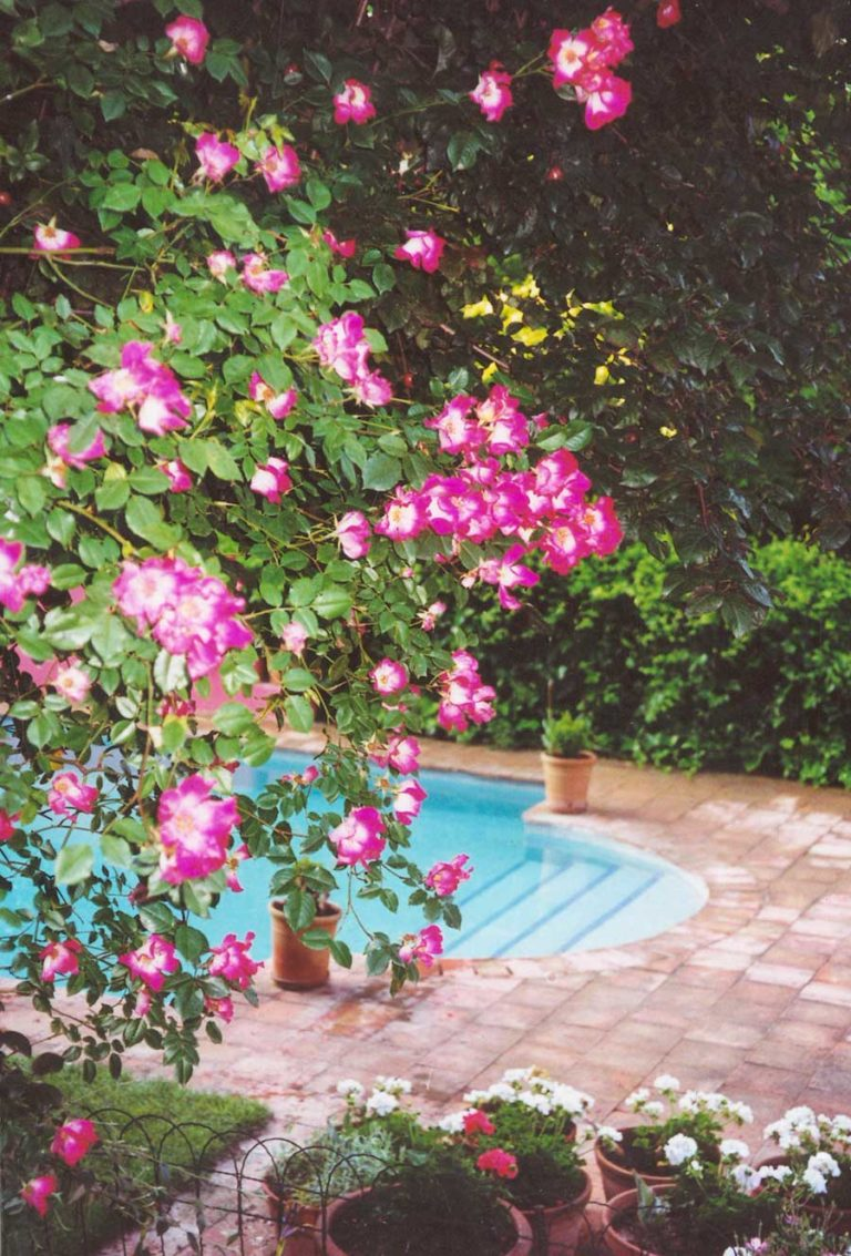 jardines-de-campo-LaMoraleja7