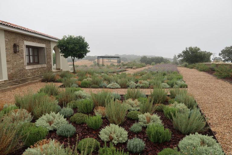 jardines-de-campo-Madroñeras