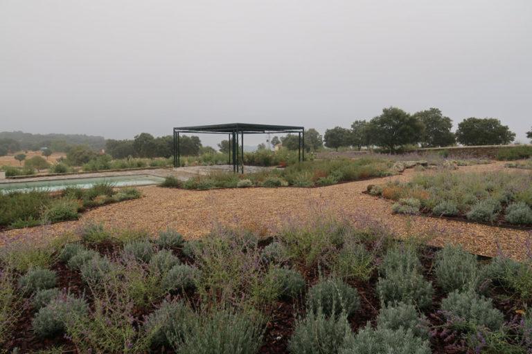 jardines-de-campo-Madroñeras11