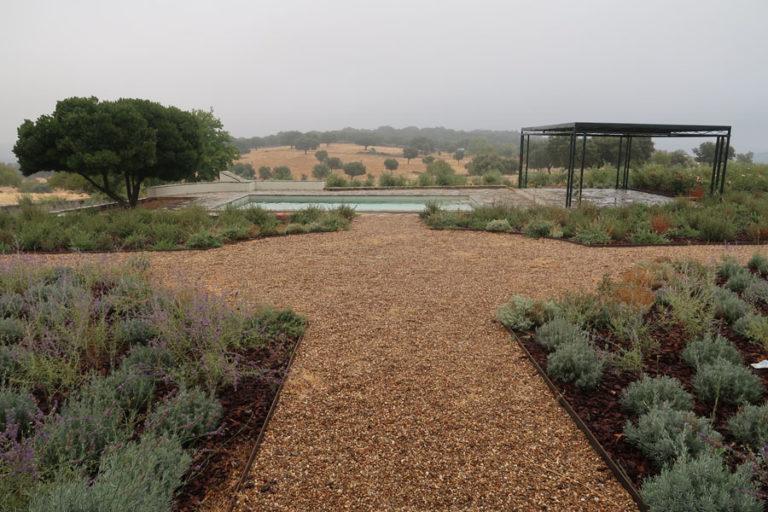 jardines-de-campo-Madroñeras12
