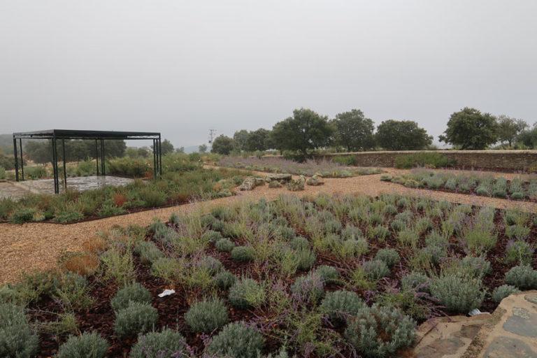 jardines-de-campo-Madroñeras13