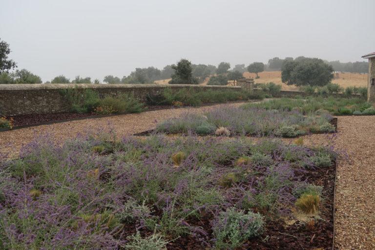 jardines-de-campo-Madroñeras18