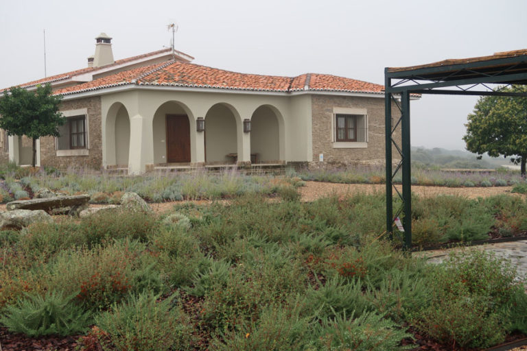 jardines-de-campo-Madroñeras19