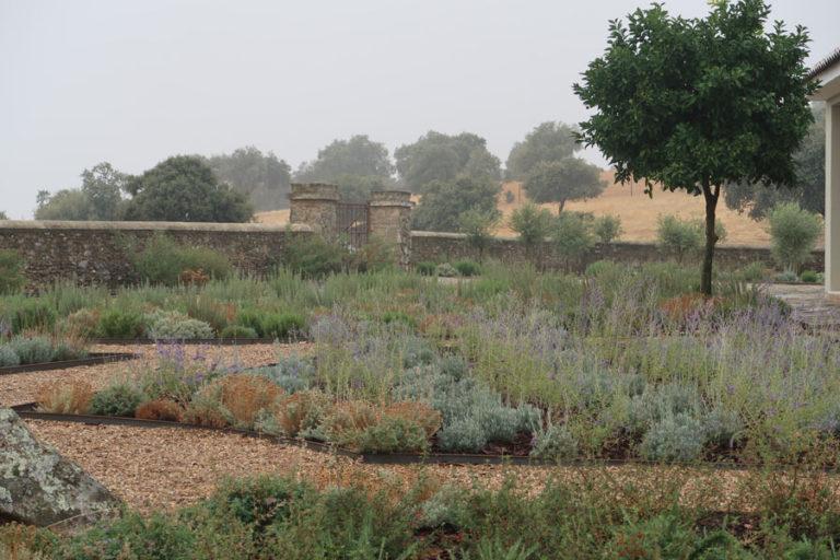 jardines-de-campo-Madroñeras21