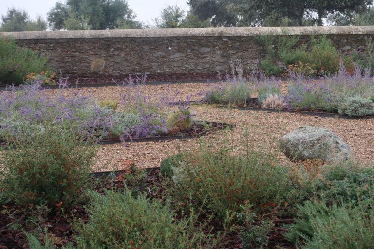jardines-de-campo-Madroñeras23