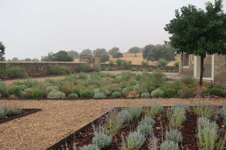 jardines-de-campo-Madroñeras26