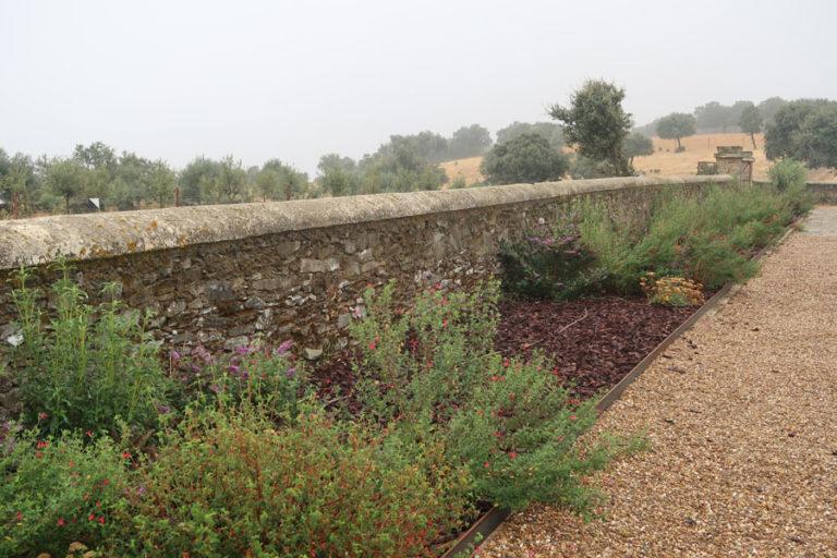 jardines-de-campo-Madroñeras30