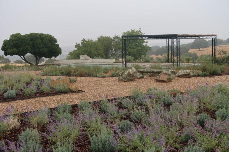 jardines-de-campo-Madroñeras31
