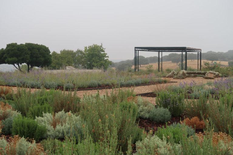 jardines-de-campo-Madroñeras32