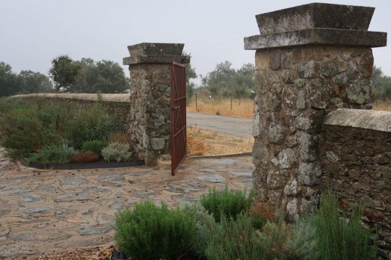 jardines-de-campo-Madroñeras35