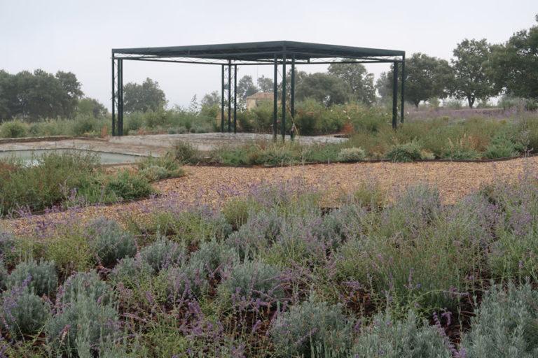 jardines-de-campo-Madroñeras37