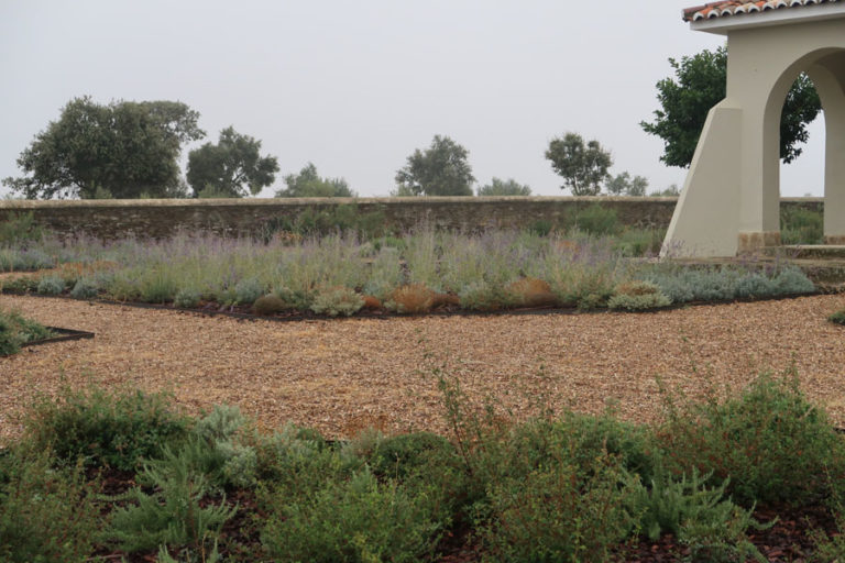 jardines-de-campo-Madroñeras8