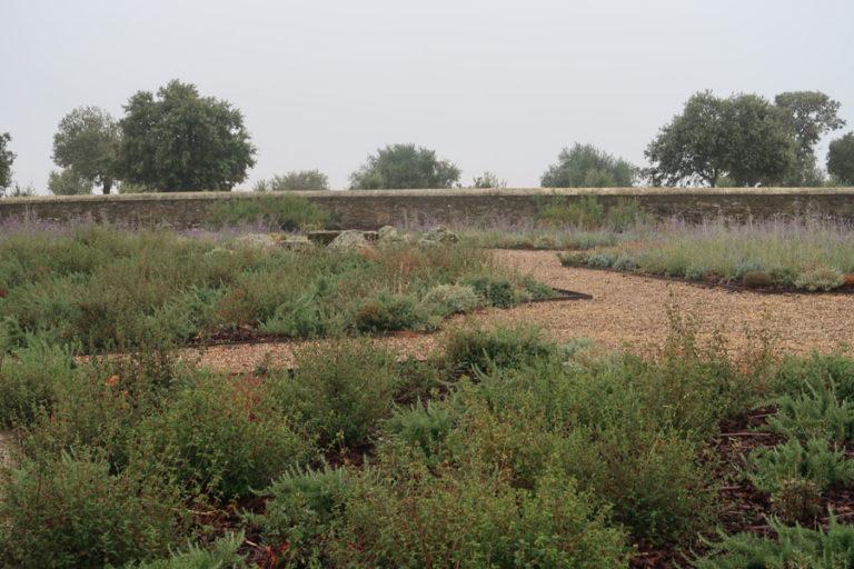 jardines-de-campo-Madroñeras9