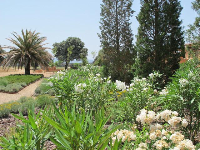 jardines-de-campo-Puente Arzobispo-22