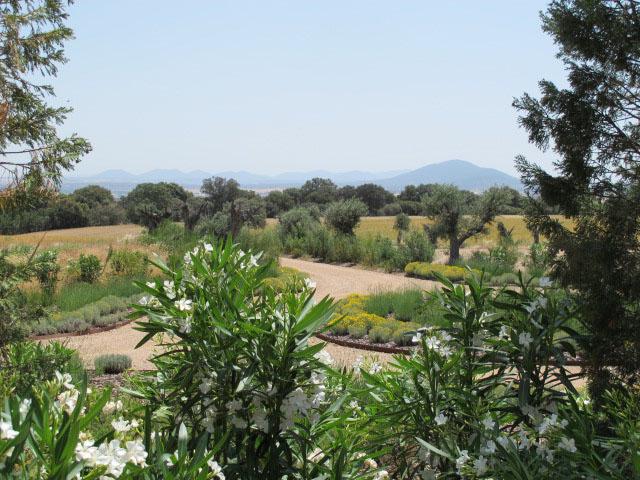 jardines-de-campo-Puente Arzobispo-25