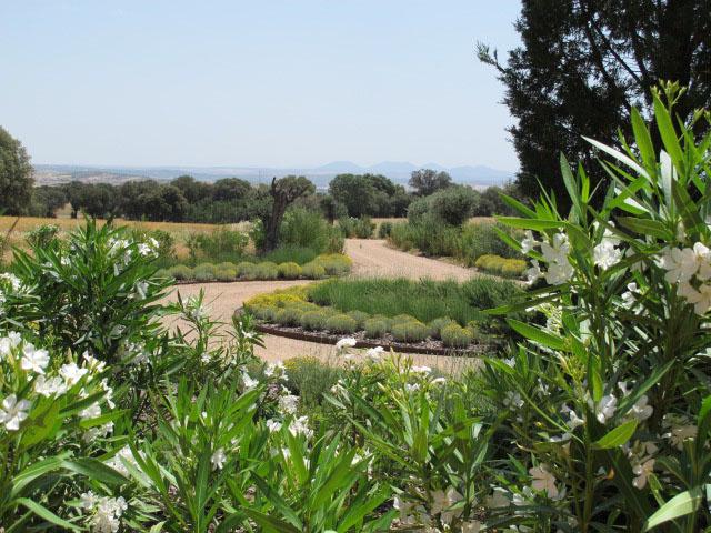 jardines-de-campo-Puente Arzobispo-27