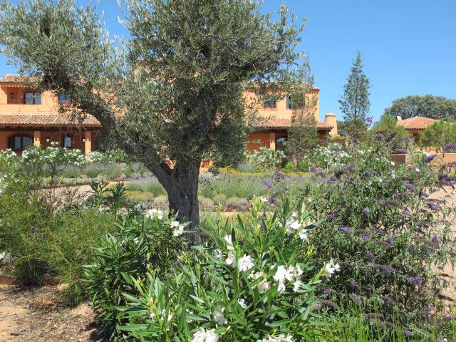jardines-de-campo-Puente Arzobispo-36