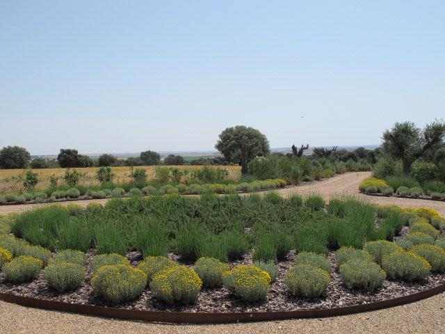 jardines-de-campo-Puente Arzobispo-4