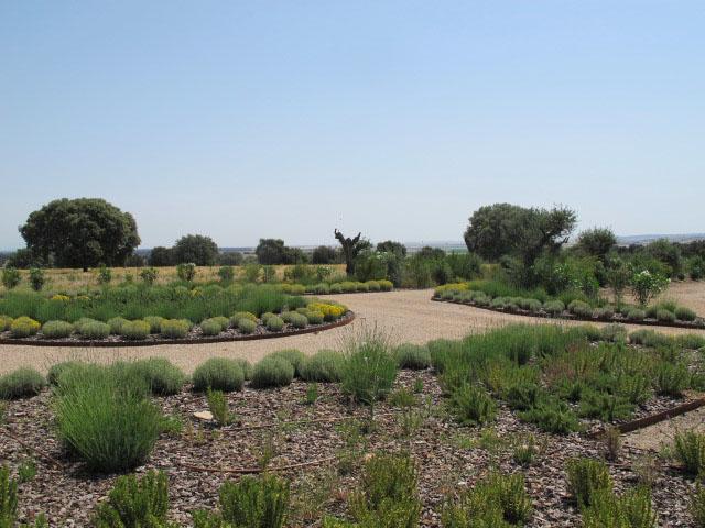 jardines-de-campo-Puente Arzobispo-5