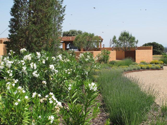 jardines-de-campo-Puente Arzobispo-6