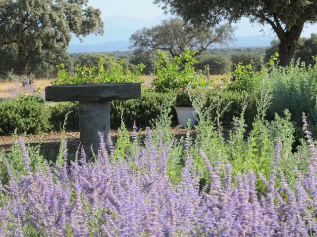 jardines-de-campo-Talavera-13