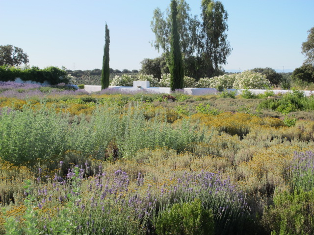 jardines-de-campo-Talavera-14