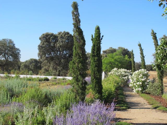 jardines-de-campo-Talavera-15