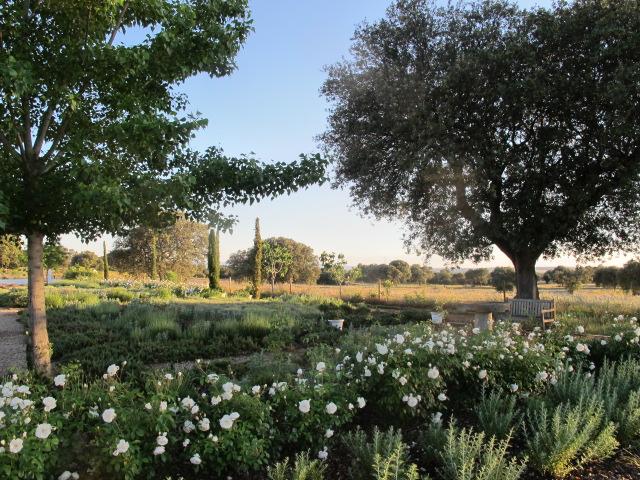 jardines-de-campo-Talavera-18