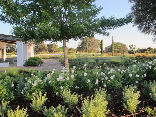 jardines-de-campo-Talavera-19