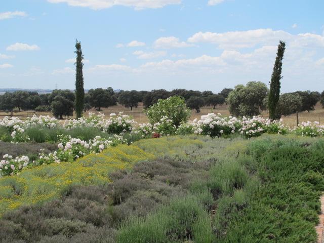 jardines-de-campo-Talavera-4