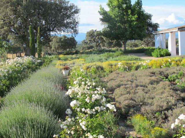 jardines-de-campo-Talavera-5