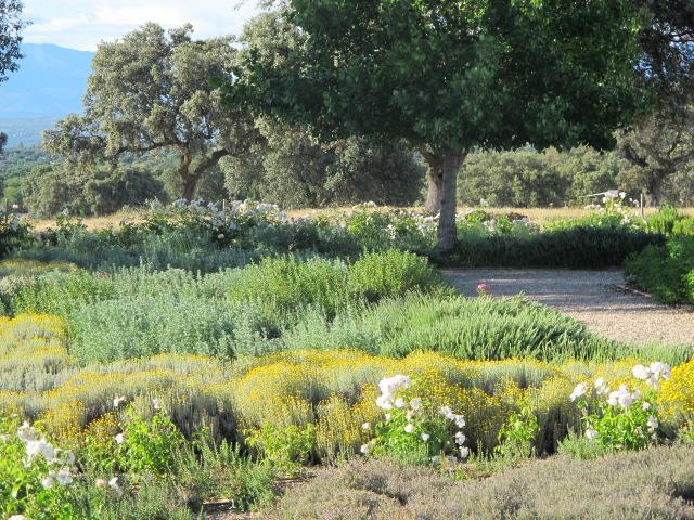 jardines-de-campo-Talavera-6