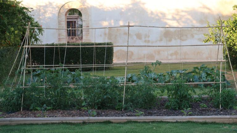 jardines-de-campo-carmona-17
