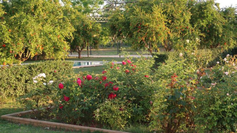 jardines-de-campo-carmona-5