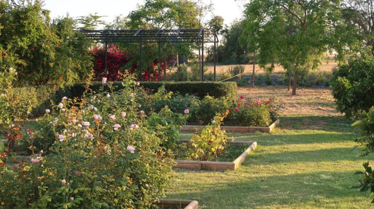 jardines-de-campo-carmona-6