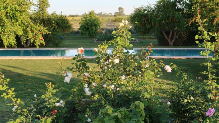 jardines-de-campo-carmona-7
