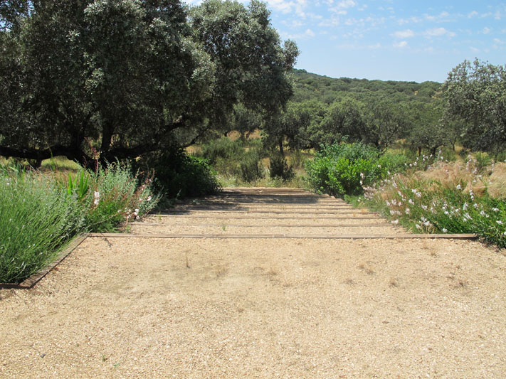 jardines-de-campo-coria-12