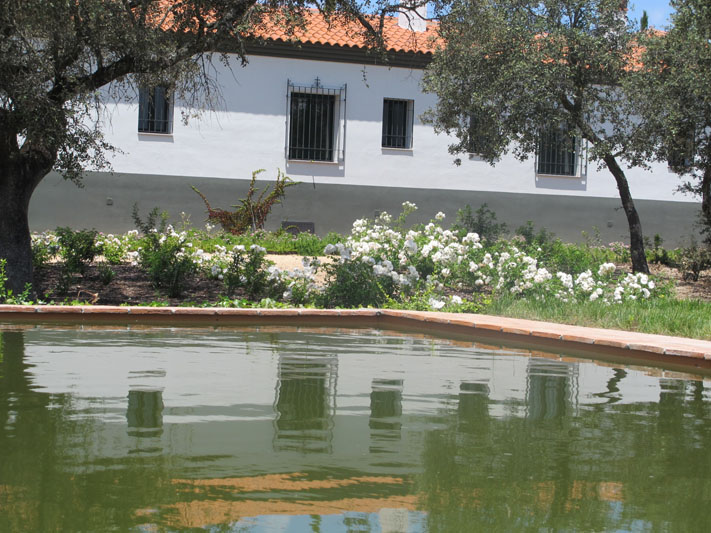 jardines-de-campo-coria-16