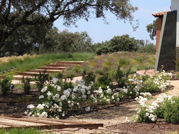 jardines-de-campo-coria-5
