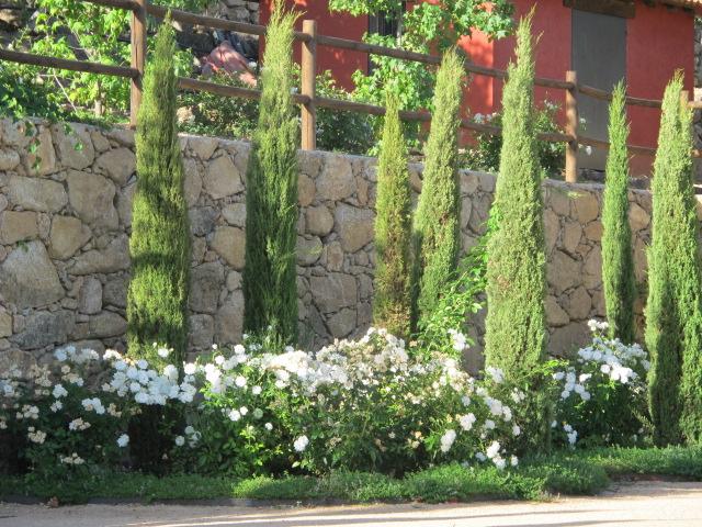 jardines-de-campo-gredos-19