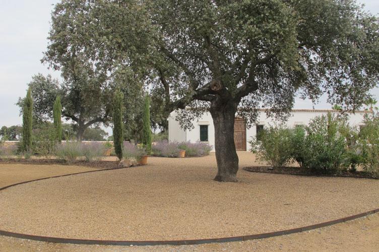 jardines-de-campo-merida-10