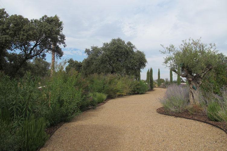 jardines-de-campo-merida-14