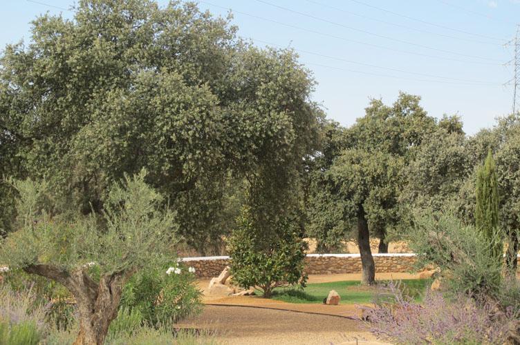 jardines-de-campo-merida-17