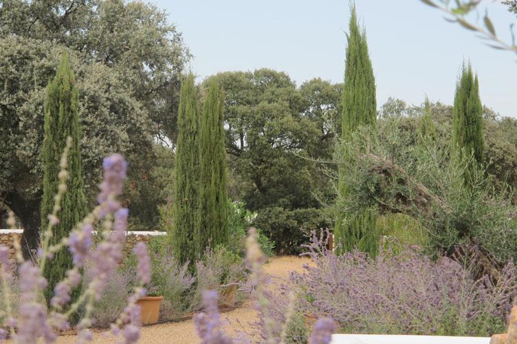 jardines-de-campo-merida-22