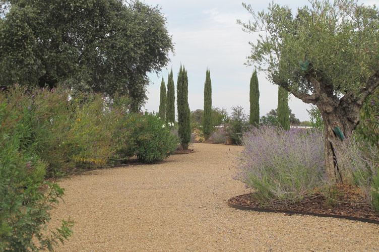 jardines-de-campo-merida-24