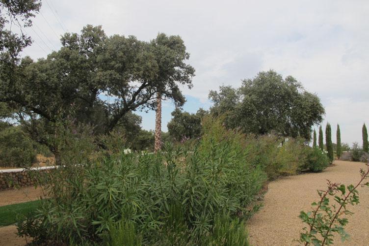 jardines-de-campo-merida-25