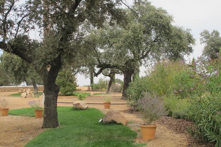 jardines-de-campo-merida-26