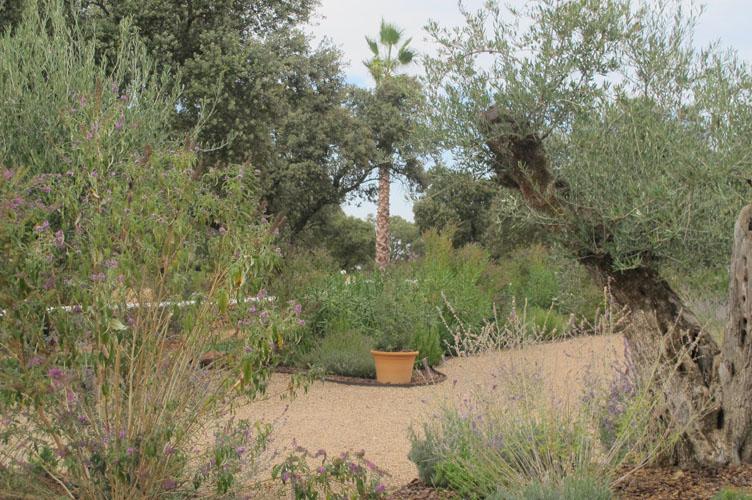 jardines-de-campo-merida-29
