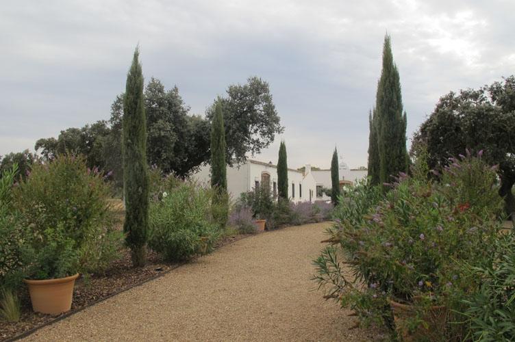 jardines-de-campo-merida-7