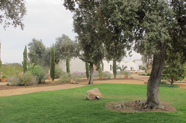 jardines-de-campo-merida-8